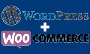 prescriptio marketing reclame media: Een webshop met WordPress en WooCommerce